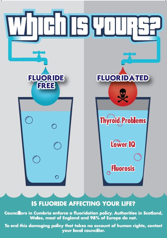 fluoride free1